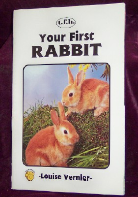 Image for Your First Rabbit