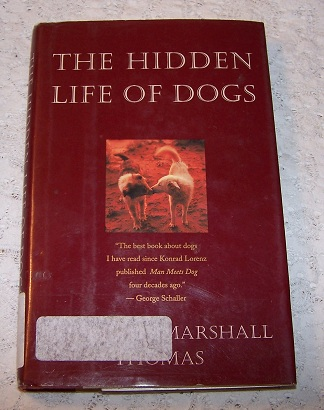 Image for The Secret Life of Dogs