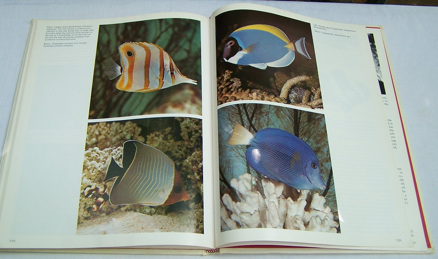 Image for Metaframe Tropical Aquarium Fishes, Freshwater and Marine