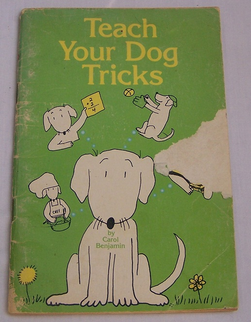 Image for Teach Your Dog Tricks
