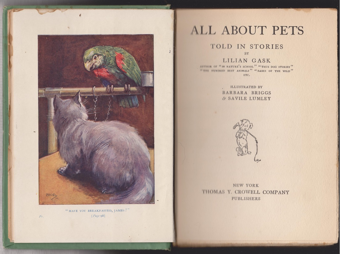Image for All About Pets, Told in Stories