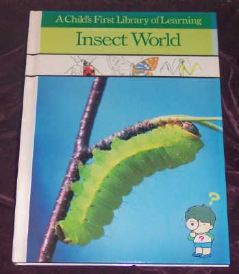 Image for Insect World