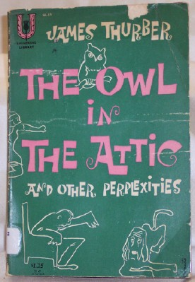 Image for The Owl in the Attic and Other Perplexities