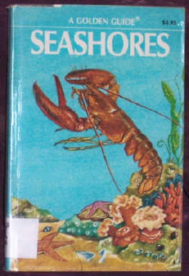 Image for Seashores: A Guide to Animals and Plants Along the Beaches