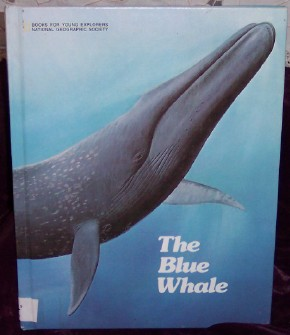 Image for The Blue Whale: The Story of Big Blue
