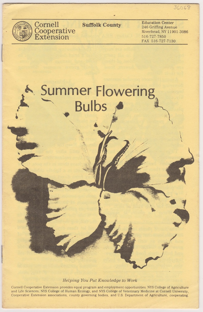 Image for Summer Flowering Bulbs