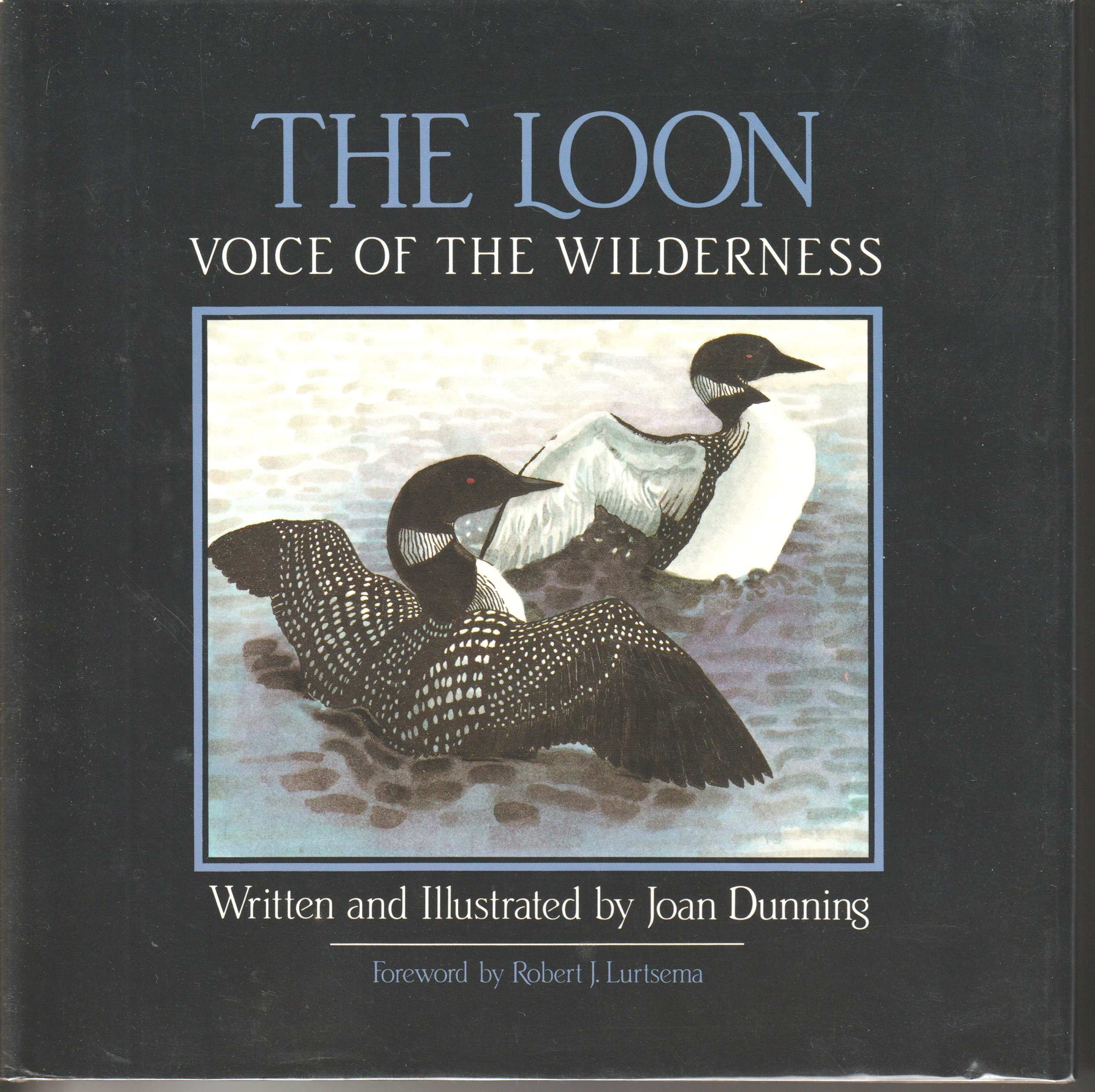 Image for THE LOON, Voice of the wilderness