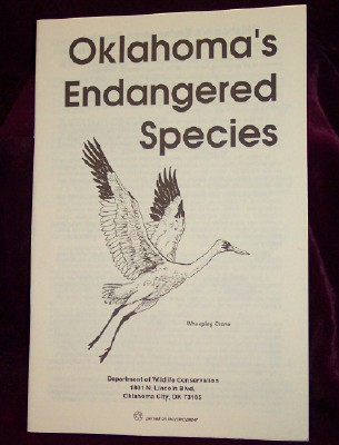 Image for Oklahoma's Endangered Species