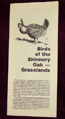 Image for Birds of the Shinnery Oak - Grasslands