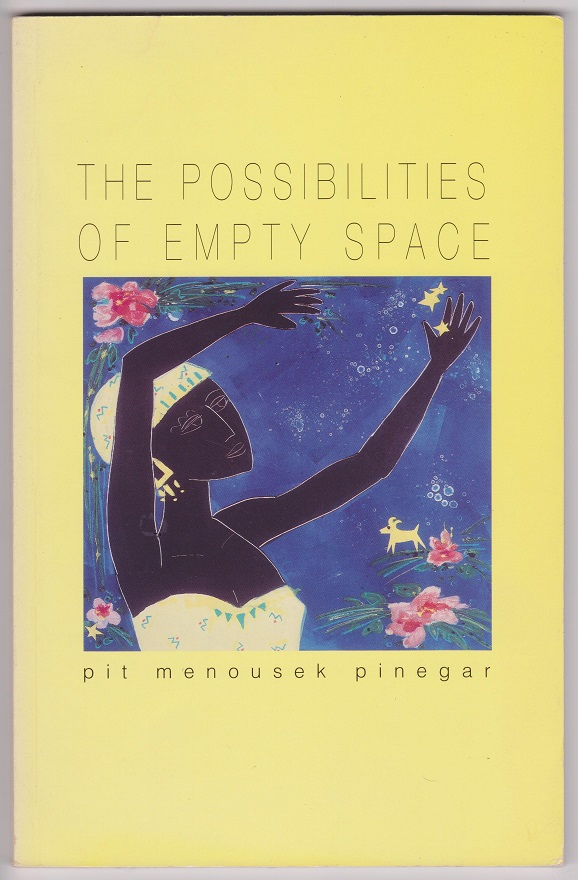Image for The Possibilities of Empty Space