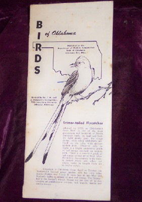 Image for BIRDS of Oklahoma